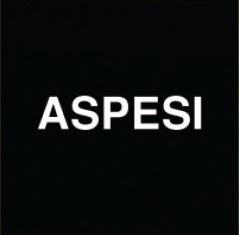 Alberto Aspesi