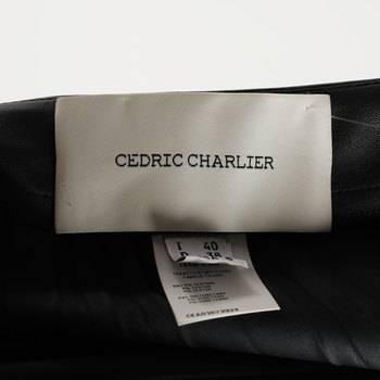 бирка Юбка Cedric Charlier